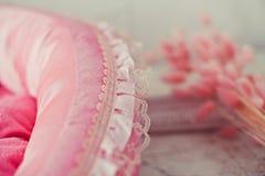 Тюфяк любимчика крупного плана розовый в комнате стоковая фотография rf