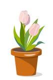 3 тюльпана в цветочном горшке бесплатная иллюстрация
