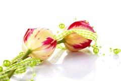 2 тюльпана и зеленых шарики. Стоковые Фото
