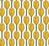 Тюльпаны акварели Стоковые Изображения