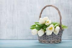 тюльпаны букета белые Стоковые Фото