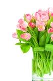 тюльпаны букета свежие Стоковое Изображение