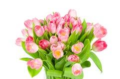 тюльпаны букета свежие Стоковое Изображение RF