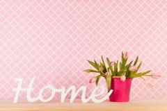 Тюльпаны вазы в интерьере Стоковое Изображение RF