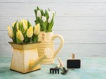 Тюльпаны весны в вазе yelow и моча чонсервной банке Стоковые Фотографии RF
