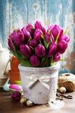 Тюльпаны весны Стоковые Фотографии RF