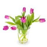 Тюльпаны в стеклянной вазе на белой предпосылке Стоковое фото RF