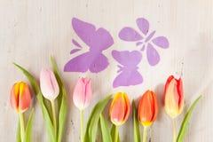 Тюльпаны и бабочки Стоковая Фотография