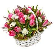 Тюльпаны и гвоздики в корзине стоковые фотографии rf