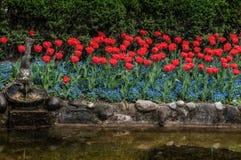 Тюльпаны и цветки на садs Sigurtà ' Стоковое Фото