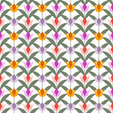 Тюльпаны на белой безшовной задней земле Стоковое Фото