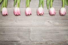 Тюльпаны на деревянной таблице Стоковое Изображение