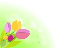 Тюльпаны на зеленой предпосылке весны bokeh. иллюстрация вектора