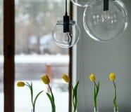 Тюльпаны на предпосылке окна Стоковые Изображения RF