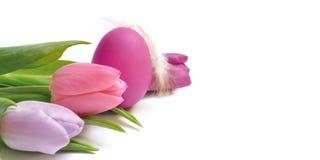 тюльпаны пасхального яйца Стоковые Изображения RF