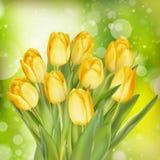 Тюльпаны покрашенные желтым цветом 10 eps Стоковое Изображение RF
