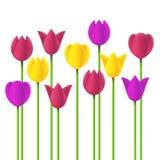Тюльпаны простого дизайна вектора Стоковое фото RF