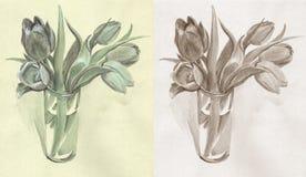 Тюльпаны Monochrome стоковая фотография
