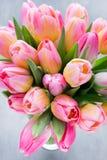 Тюльпан, цветки на серой предпосылке Стоковое Изображение