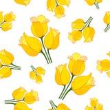 Тюльпан pattern_5 Стоковые Фото
