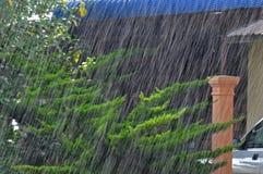 тяжело идущ дождь Стоковая Фотография