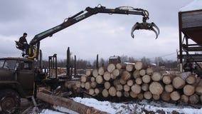 Тяжелый затяжелитель руки разгржает журналы пиломатериала от тяжелого грузовика на фабрику лесопилки сток-видео