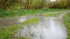 Тяжелое rainshower с ветром Идите дождь падения понижаясь к лужицам на проселочной дороге Видео 1080p HD акции видеоматериалы