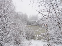 тяжелые снежности стоковое фото