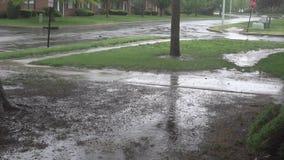 Тяжелый дождь шторма на дороге падает на поверхность воды видеоматериал