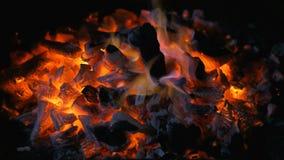 Тлеющие угли угля Стоковое Изображение