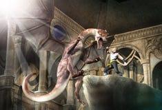 Убийца дракона Стоковое Изображение RF