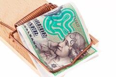 увенчивает danish Данию валюты Стоковые Изображения RF