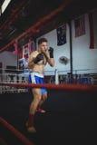 Уверенно боксер выполняя позицию бокса стоковое фото