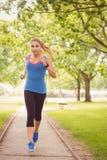 Уверенно женщина jogging в парке Стоковая Фотография RF