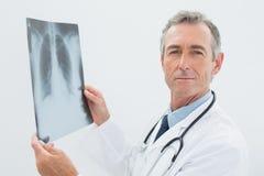 Уверенно доктор с изображением рентгеновского снимка легких Стоковое фото RF