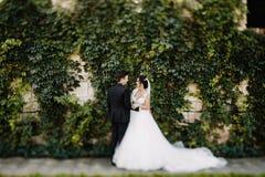 Уверенно элегантный groom и красивая застенчивая невеста держа ou рук Стоковая Фотография