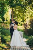 Уверенно элегантный groom и красивая застенчивая невеста держа ou рук Стоковое Изображение RF