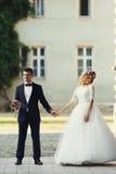 Уверенно элегантный groom и красивая застенчивая невеста держа ou рук Стоковые Изображения RF