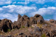 Увлекательное событие в Мауи Стоковое Изображение RF