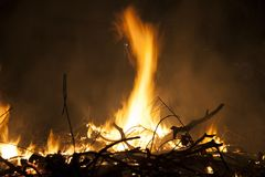 Увольняйте пламя, горящая ручка дерева на ноче Горячее накаляя тело воспламененного газа Стоковые Изображения