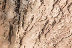 Увольнянная текстура 1 шара Стоковые Изображения RF