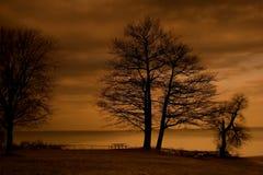 увядая красное небо Стоковое Фото