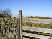 Увядая простирание полей и древесин осени Стоковые Изображения