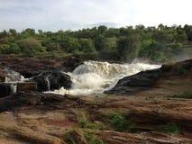 Уганда Стоковая Фотография RF