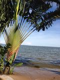 Уганда Стоковая Фотография