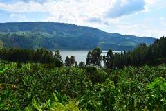 Уганда Стоковое фото RF