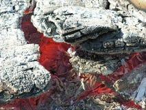 угли горячие Стоковое Изображение RF