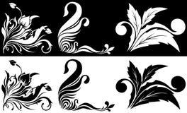 угловая черная белизна картины цветка Стоковая Фотография
