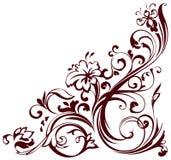 угловойое флористическое Стоковая Фотография