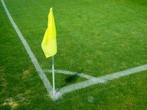 угловойой желтый цвет флага Стоковое фото RF